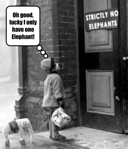 Oh good, lucky I only have one Elephant!