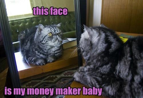 Cats,cute,mirror