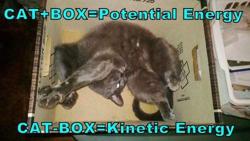 CAT+BOX=Potential Energy  CAT-BOX=Kinetic Energy