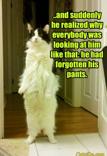 ..and suddenly he realized why everybody was looking at him like that: he had forgotten his pants.