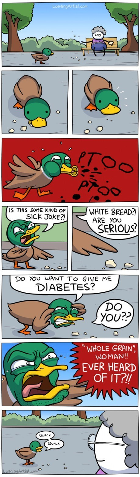 bread,ducks,diabetes,web comics