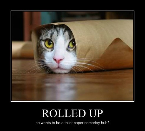 ROLLED UP