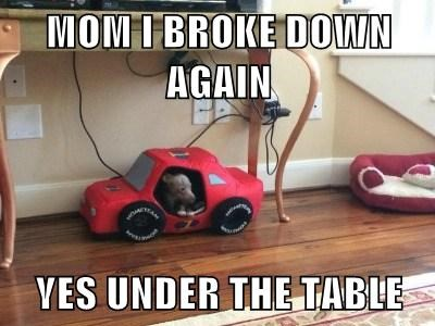 MOM I BROKE DOWN AGAIN  YES UNDER THE TABLE
