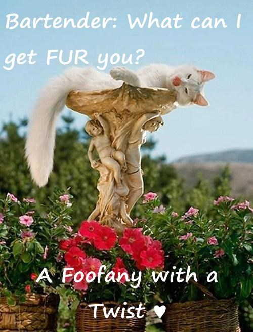 Bartender: What can I get FUR you?  A Foofany with a Twist ♥