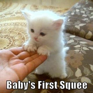 Baby's First Squee