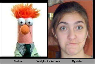 Beaker Totally Looks Like My sister