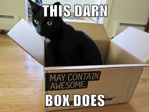 THIS DARN  BOX DOES