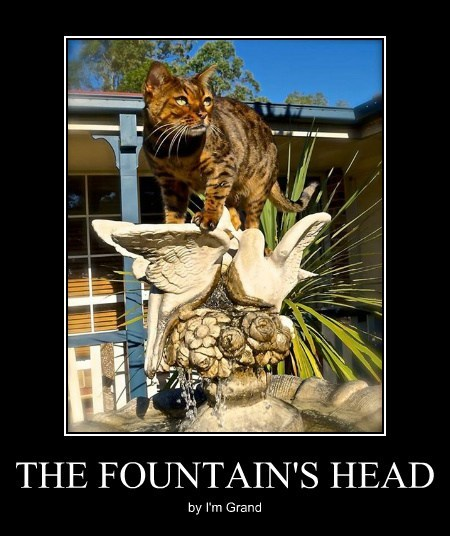 THE FOUNTAIN'S HEAD