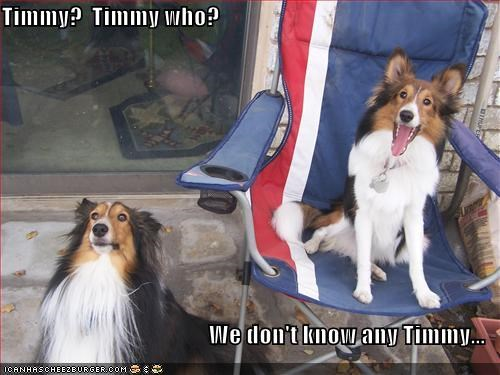 Timmy?  Timmy who?  We don't know any Timmy...