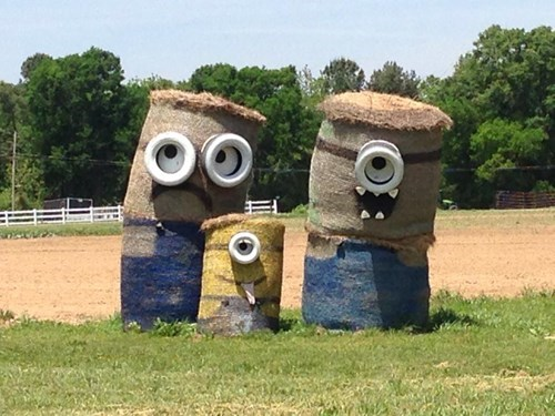 Mom, Look! Giant Minions!