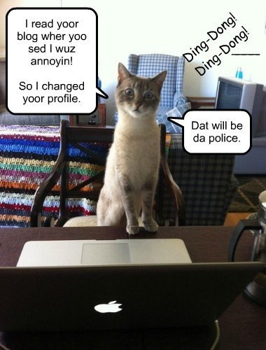 Don't mess with Internet-savvy kitteh.