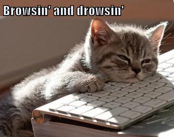 Browsin' and drowsin'