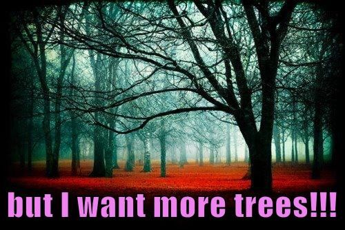 but I want more trees!!!