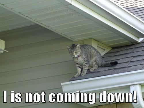 I is not coming down!