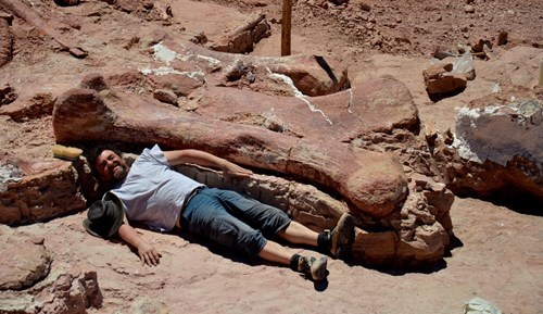 Discovery of the Day: Fossilized Bones of Largest Known Dinosaur Discovered in Argentina