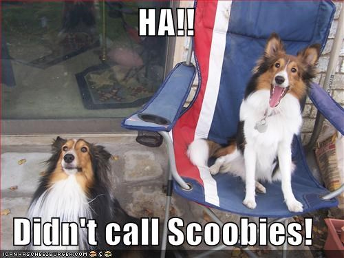 HA!!   Didn't call Scoobies!