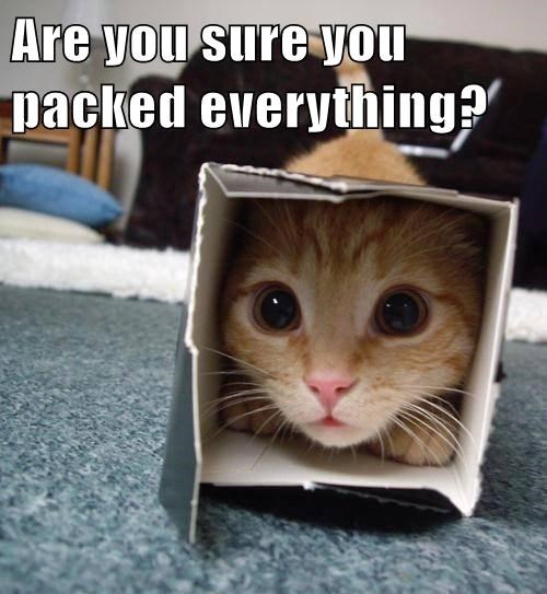 Are you sure you packed everything?