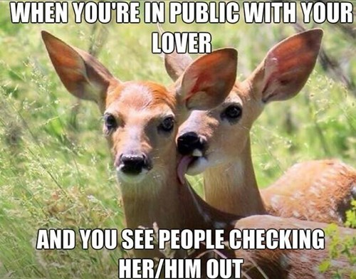 deer,funny,PDA,in public,dating