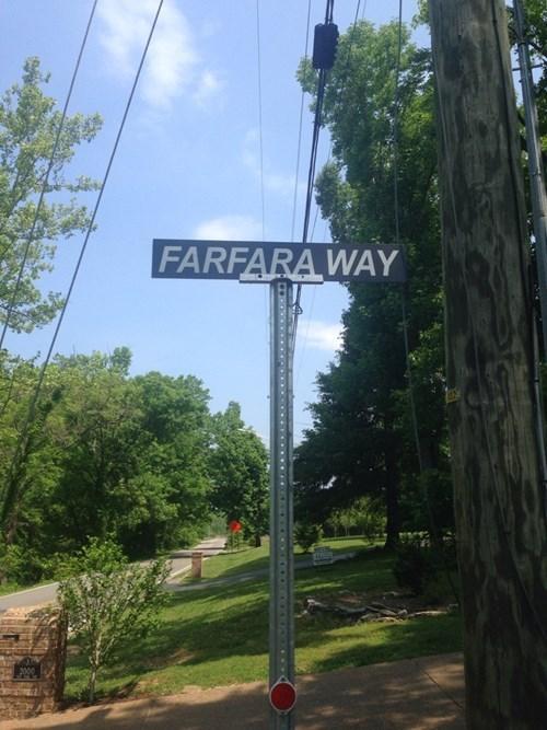 puns,star wars,names,street name