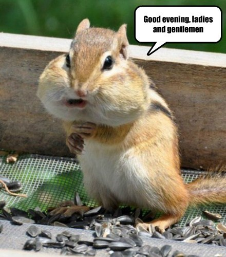 Alfred Chipmunk Presents