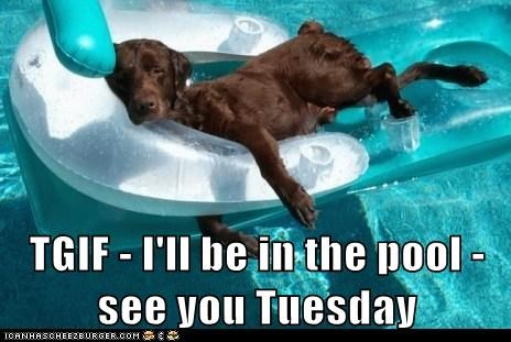 TGIF - I'll be in the pool - see you Tuesday