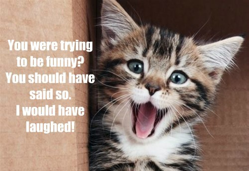 You were trying  to be funny? You should have said so. I would have laughed!