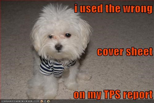 i used the wrong cover sheet on my TPS report