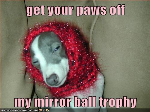 get your paws off  my mirror ball trophy