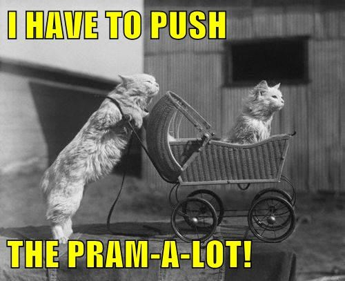 I HAVE TO PUSH  THE PRAM-A-LOT!