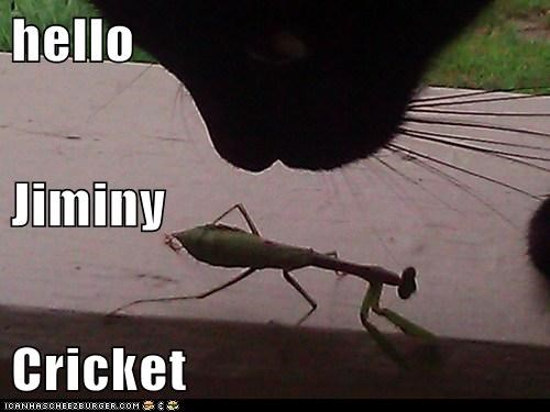 hello Jiminy Cricket