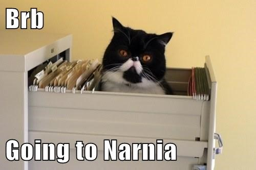 Brb  Going to Narnia