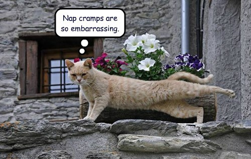 Nap cramps are so embarrassing.