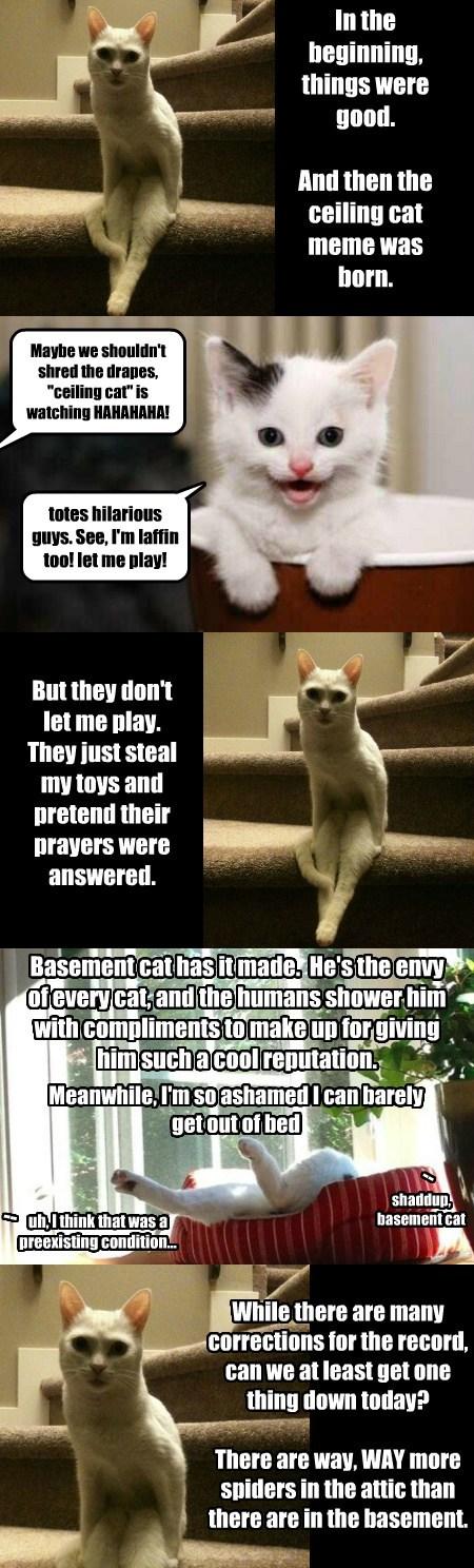 The Rehabilitation of Ceiling Cat, Pt. 1