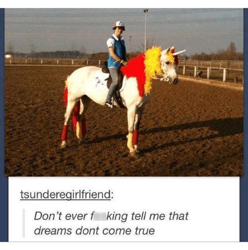 Horseback Riding, I Choose You