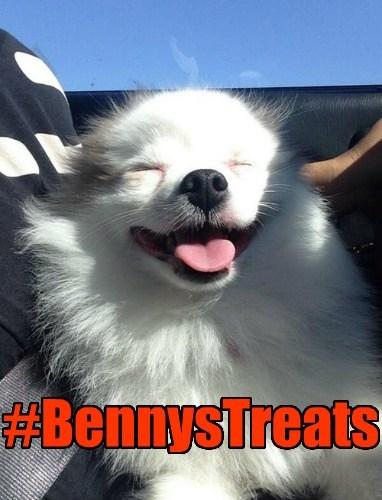 Benny's Treats