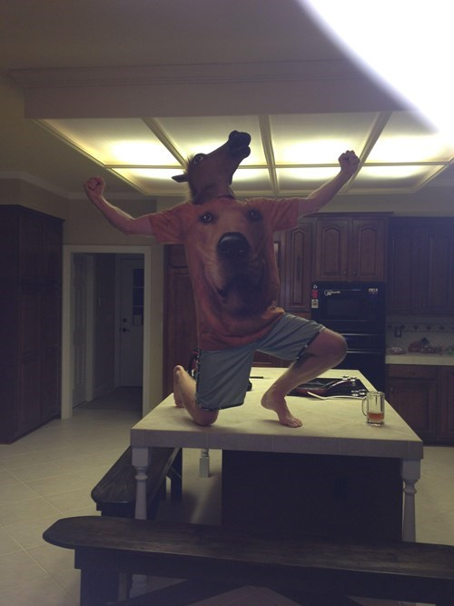dogs,horse mask,t shirts,poorly dressed