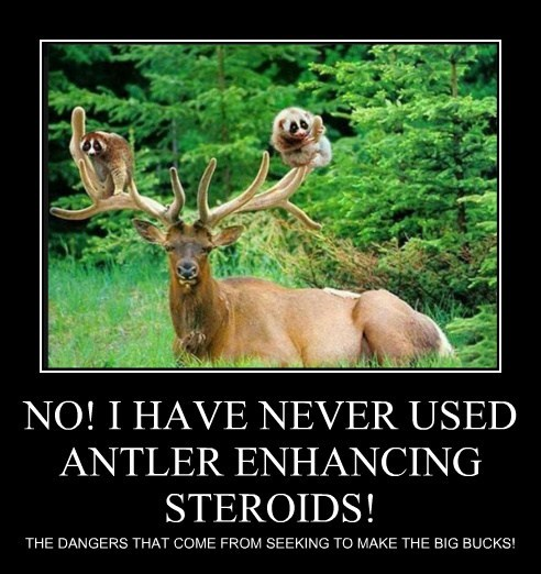 NO! I HAVE NEVER USED ANTLER ENHANCING STEROIDS!