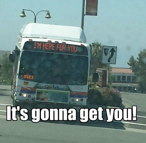 Bus of Doom