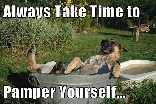 pamper,dogs,baths