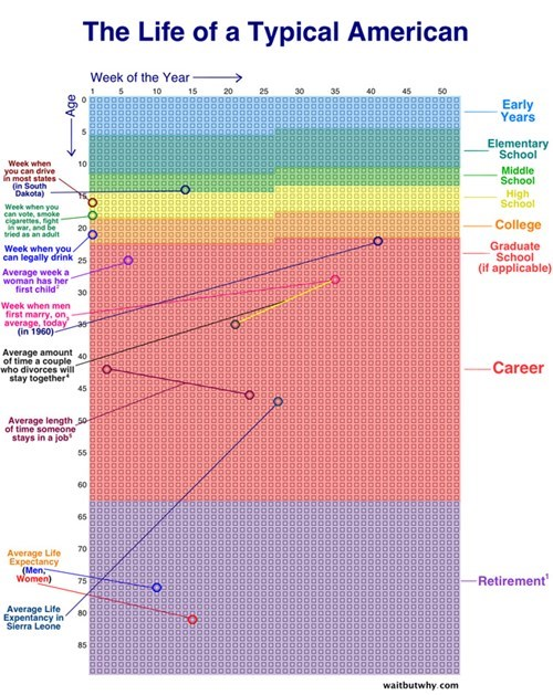 Chart of the Day: A Chart That Measures a Human's Life in Weeks