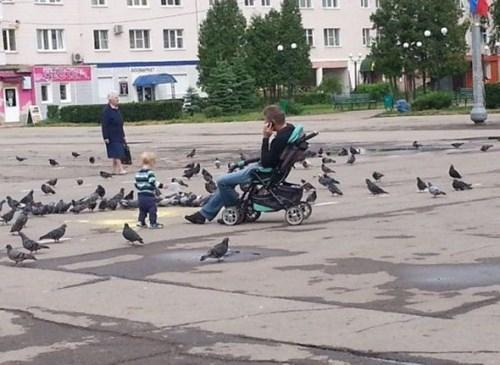 birds,kids,parenting,stroller,sitting