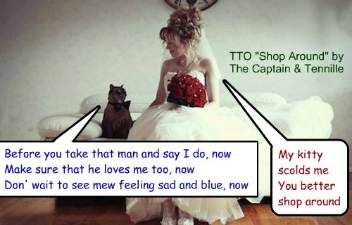 """Prenuptial Kitty"" (TTO ""Shop Around"" by The Captain & Tennille [cover of Smokey Robinson And The Miracles])"