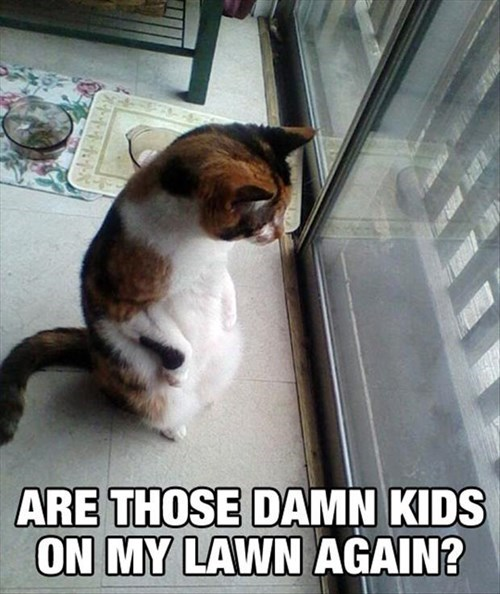 I'll Sic the Dog on Them!