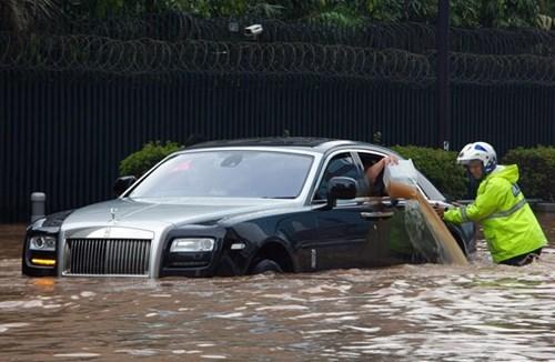 cars,flood