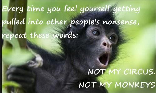 Every time you feel yourself getting pulled into other people's nonsense, repeat these words:  NOT MY CIRCUS.                                      NOT MY MONKEYS