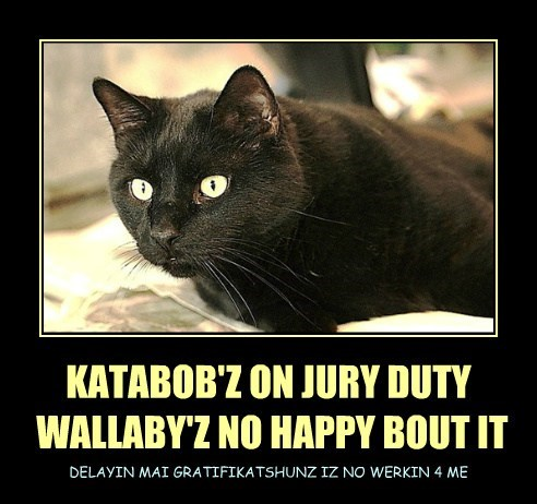 KATABOB'Z ON JURY DUTY  WALLABY'Z NO HAPPY BOUT IT