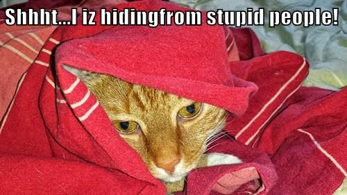 Shhht...I iz hidingfrom stupid people!
