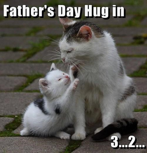 Father's Day Hug in  3...2...