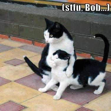 (stfu, Bob...)