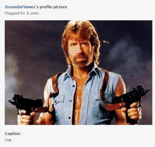 chuck norris,funny,online dating,love,g rated,dating